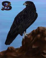 Blackie by sammacha