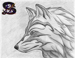 Tribal Glare - Wolf - Pencil Art by sammacha