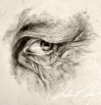 Old Age by duhi