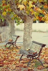 Fallen Leaves by Ana-D
