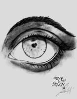Eye Study by BrunovicArt
