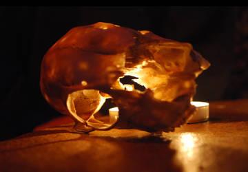Skull 1 by terezarsm