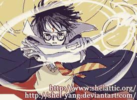 magic by shel-yang