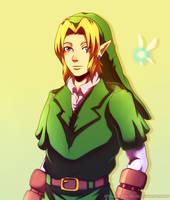 Our brave Hero by Queen-Zelda