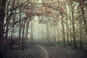 Autumns warmth by ZanaSoul