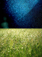 Bokeh Day and Night by RoxNebres