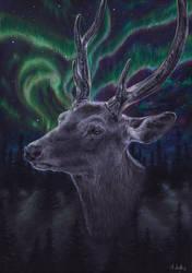 Northern Spirit by frostedacorn