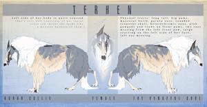 Terhen character sheet by Saranna
