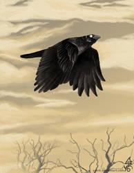 Fly away by Yuki6