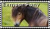 Exmoor pony stamp by anahSiyah