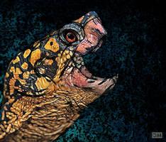 Eastern Box Turtle by Bubasti333