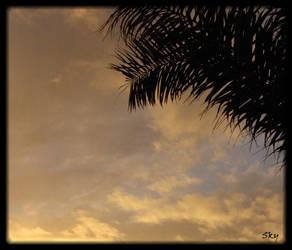 Sky by ShadowSplicer
