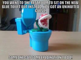 Piranha Plant filled toilet (Meme) by BenorianHardback26