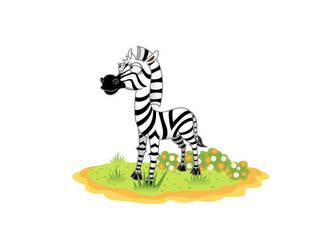 Zebra by jongart