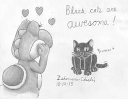 14 - Black cat by Ishimaru-Chiaki