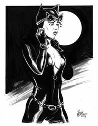 Catwoman sketch by stevebryant