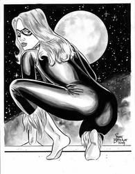 Black Cat Sketch by stevebryant
