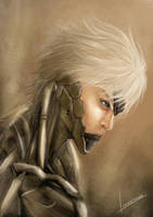 Raiden by linvathan