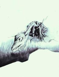 Dragon on The Precipice by M44X