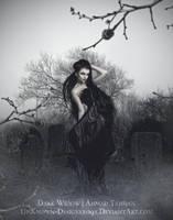 The Dark Widow by Ahmad-Tahhan