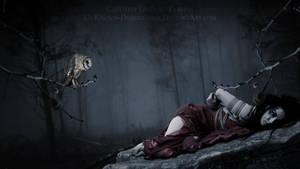 Captivity by Ahmad-Tahhan
