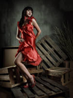 .: woman in red 2 :. by imetus
