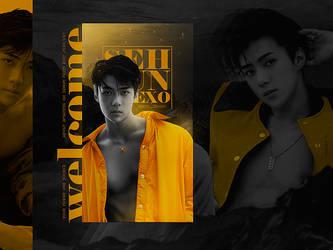 Sehun from EXO / Golden boy by designML