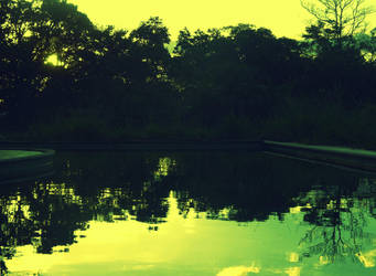 Pool by lulucas666