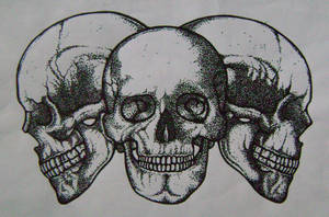 skulls by danmurphyiv