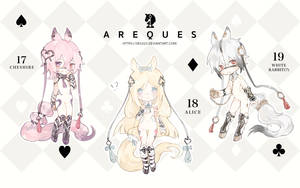 Areques Adoptable [PENDING] by sr1023