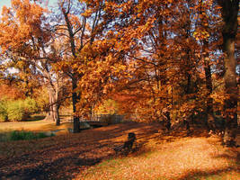 Golden Polish Autumn [3] by Luin-Tinuviel