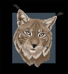 Lynx by LunaticSqirrel