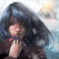 Mid-walk Snowstorm by Daidus