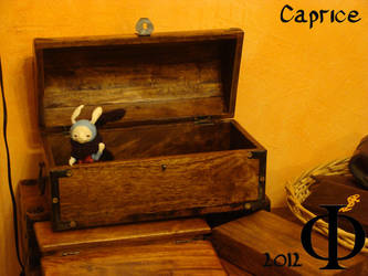 Rabbit in a Box by Sanveanne