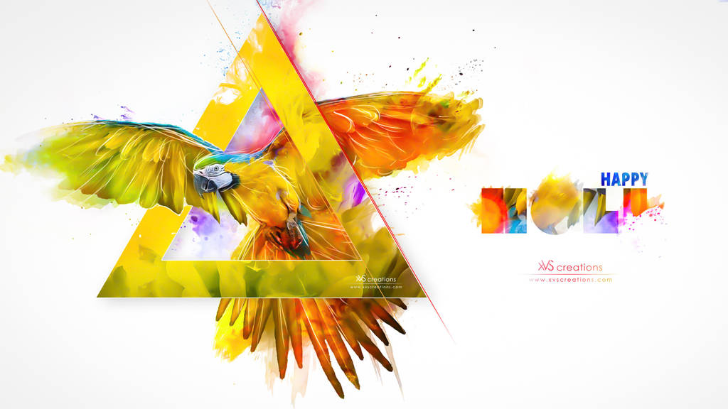 Abstract  Colors (Happy Holi) 2016 by xvsvinay