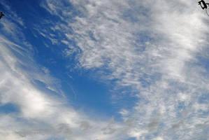 Morning Skies by charliemarlowe
