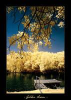 INFRARED: Golden Season by brumie