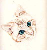 Scarlet Kitten by Luna-Tech-art