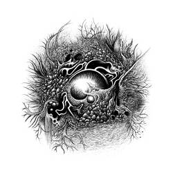 Orb 1 (Black and White) by SearingLimb