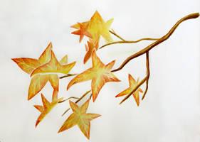 Autumn doodle by l-Zoopy-l