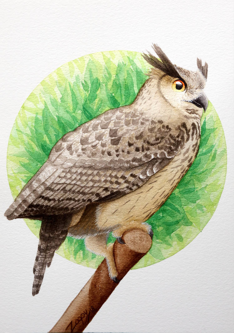 [Commission] Eagle owl for Naturama Projekt by l-Zoopy-l