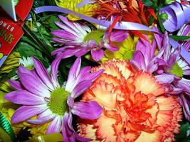 Flower Arrangement by FanFrye24