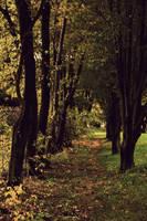 Autumn Stroll by FanFrye24
