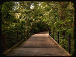 Warm Path by FanFrye24