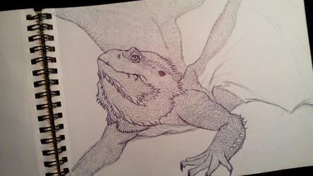 Dragon by anythingLDA