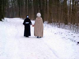 Winter Walk by salzraender