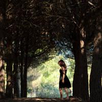 Forest Walk by Olga-Zervou