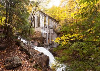 Autumn Carbide by JamesHackland