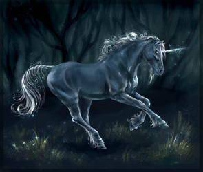 One more unicorn by SnowSkadi