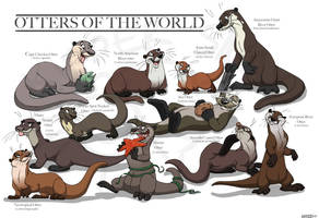 Otter Species by Kipper-Snax